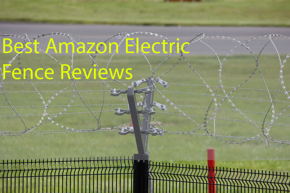 Top 10 Best Electric Fence Amazon Wireless Dog Fence